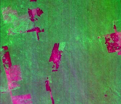 نمونه ای از تصاویر ماهواره ای دارای خطای راه راه شدگی