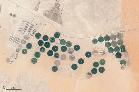 زمینهای عربستان صعودی که 80 درصد آب آن به مصارف کشاورزی میرسد - عکس از USGS